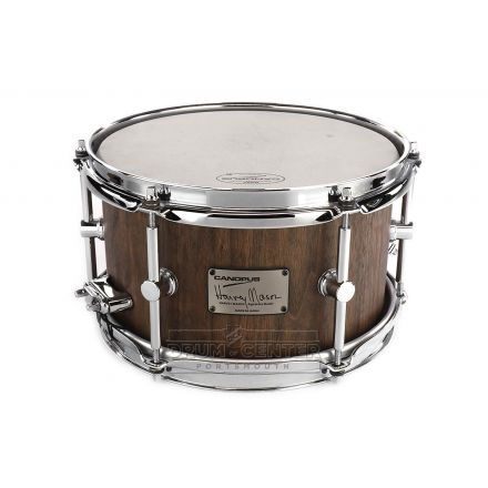 Canopus Harvey Mason Stave Walnut Snare Drum 10x6 DEMO MODEL